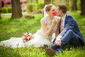 ������, ������: The Groom Kisses The Bride