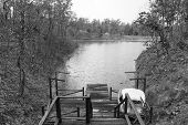 picture of pier a lake  - wooden pier beside the lake in forestblack and white - JPG