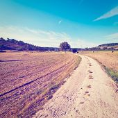 picture of farmhouse  - Dirt Road Leading to the Farmhouse in Tuscany Retro Effect - JPG