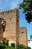 pic of arabic  - View of the Arabic castle  - JPG