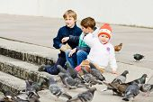 foto of child feeding  - three children feeding doves in the city - JPG