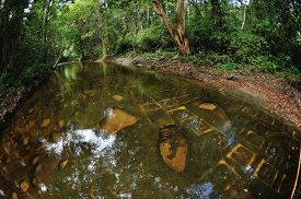 picture of lingam  - beautiful river of thousand lingams made of stones under the water - JPG