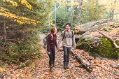 Couple Hiking In The Woods In Canada poster