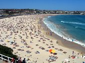 picture of boxing day  - Boxing day on Bondi beach Sydney Australia  - JPG