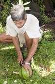 picture of machete  - man machete cutting fresh coconut for milk Nicaragua Corn Island Central America  - JPG