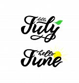 Hello June, July Handwritten Lettering On White Background. Leaf, Sun. Modern Calligraphy. Isolated  poster