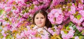 Child Enjoy Life Without Allergy. Sniffing Flowers. Get Rid Of Seasonal Allergy. Girl Enjoying Flora poster