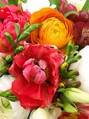 Bouquet From Spring Flowers. Tulip In A Brides Flower Bouquet. Beautiful Summer Bouquet. Bouquet Of  poster