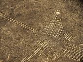 foto of ica  - Nazca lines figure of the hummingbird located next to the panamerican highway south of Lima - JPG