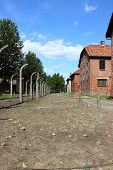 foto of auschwitz  - Barbed wire electrical fence at Auschwitz concentration camp - JPG