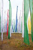 stock photo of darjeeling  - Colorful Mantra flag field in Darjeeling India - JPG