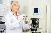 Senior female scientist analyzing blood sample in medical laboratory