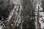 stock photo of mudslide  - Mudslides scar the hillsides of Washington state following heavy rain on top of snow - JPG