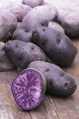 stock photo of solanum tuberosum  - Vitelotte blue-violet potato (Solanum ajanhuiri Vitelotte Noir), close up