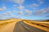picture of tar  - Urban tar road in between wheat fields in South Africa - JPG