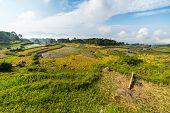 picture of mud-hut  - Stunning landscape and bright rice fields in the remote region of  Tana Toraja - JPG