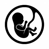 pic of womb  - Fetus Icon Isolated on White Background Vector - JPG