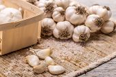 stock photo of condiment  - Garlic concept with garlic cloves - JPG