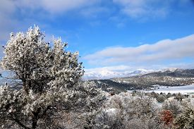 stock photo of blanket snow  - A snow blanket cover the La Plata Mountains in Durango, CO