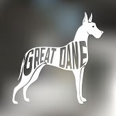 image of great dane  - Creative design of great dane breed dog silhouette on colorful blurred background - JPG