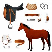 stock photo of horse-breeding  - Set of equestrian equipment for horse - JPG