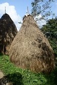 pic of haystack  - The haystacks at the plot in village - JPG