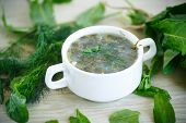 picture of sorrel  - Sorrel soup with egg and greens in a plate - JPG