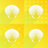 stock photo of scallops  - White scallop seashell on yellow backgrounds long shadow - JPG