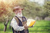 foto of farmer  - Senior farmer with organic cheese outside in green nature - JPG