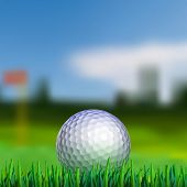 picture of balls  - Golf ball on grass with blured fairway on background - JPG