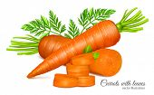 stock photo of carrot  - Carrots with leaves and carrot slices - JPG