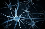 pic of neuron  - Neurons abstract background - JPG