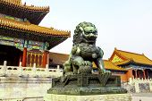 foto of purity  - Bronze Lion at Palace of Heavenly Purity in Forbidden City - JPG