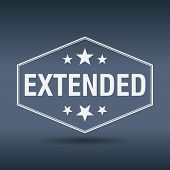 foto of extend  - extended hexagonal white vintage retro style label - JPG