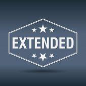 image of extend  - extended hexagonal white vintage retro style label - JPG