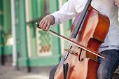 foto of cello  - The guy who plays the cello in the street in the summer - JPG
