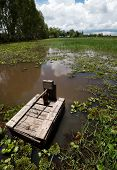 Постер, плакат: Eel Fishing Trap Rural Food Gathering Asia