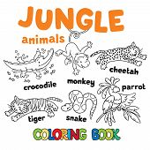 Постер, плакат: Set of funny jungle animals coloring book