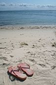 stock photo of bribie  - a pair of pink thongs on the beach in vertical format - JPG