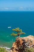 Постер, плакат: Beautiful Crimean landscape in Cape Martyan reserve