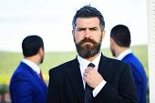 Business Success And Confidence Concept. Businessman With Beard Adjusts Tie poster