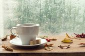 Autumn. Cup Of Coffee. poster