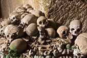 picture of catacombs  - Collection of human skulls and femurs in the Fontanelle catacomb - JPG