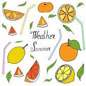 Happy Celebrate Orange Freshness Draw. Orange Freshness Vector Illustration  Hand Draw. Celebrate Ha poster