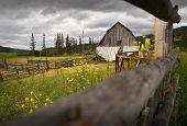 Weathered Ranch Barn Nicola Valley British Columbia. An Old, Weathered Barn In The Nicola Valley, Br poster