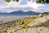 stock photo of tierra  - Tierra del Fuego National Park is a national park on the Argentine part of the island of Tierra del Fuego in the ecoregion of Patagonic Forest and Altos Andes - JPG