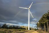 Wind Turbine And Rainbow