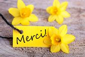Label With Merci