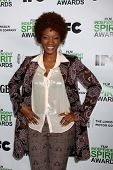 LOS ANGELES - JAN 11: Yolonda Ross at the 2014 Film Independent Spirit Awards Nominee Brunch at Boa