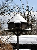 Dovecote in winter